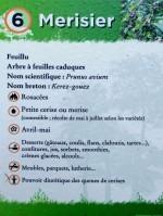 Parcours botanique - meurisier