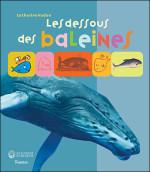 Les-deous-des-baleines-et-des-mammiferes-marins