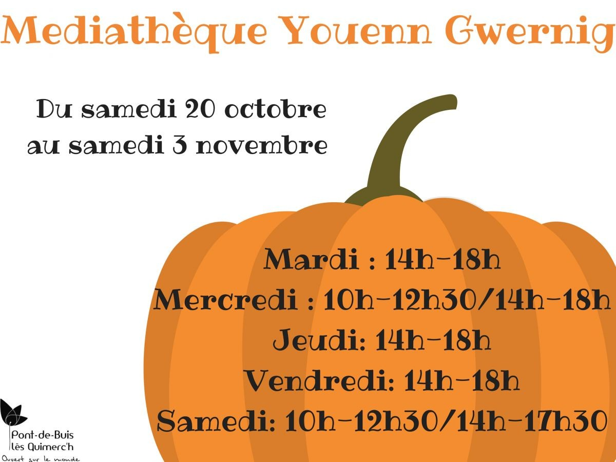 Mediatheque Youenn Gwernig (2)