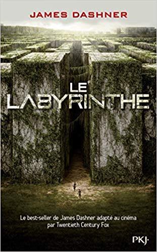 Une bande d'ados essayant de survivre dans un labyrinthe