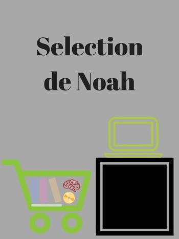 Section de Noah