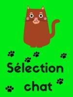 Sélection chat (1)